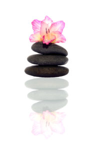 Gladiola and pebbles with inverted reflection on white background