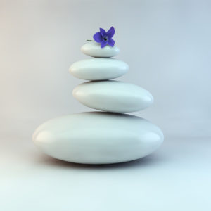 Pile of rocks with a purple flower above